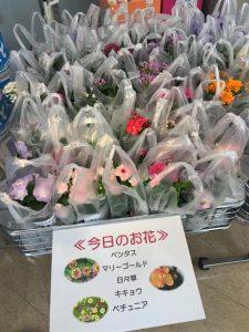 お花の日(本店)② 圧縮